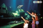 Family visiting the Cancun Aquarium